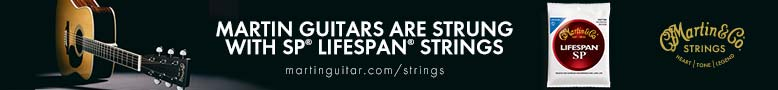 Martin Lifespan Strings