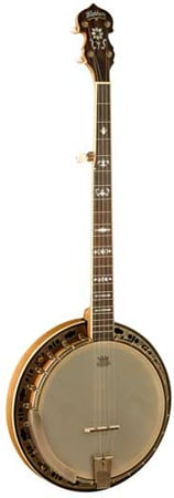 Washburn B120 5 String Banjo with Case