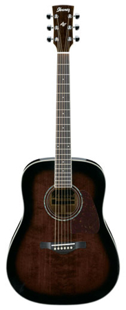 Ibanez AW300 Artwood Acoustic Guitar