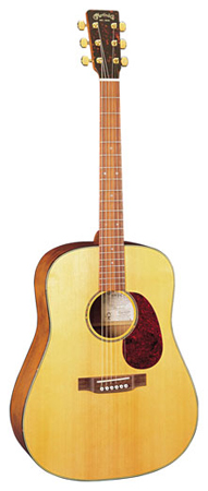 Martin SWDGT Sustainable Wood Dreadnought Guitar with Case