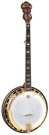 Fender FB59 5 String Banjo with Case