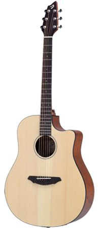 Breedlove Passport D250 SMe Acoustic Electric Guitar with Gigbag