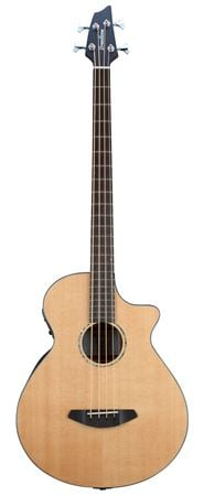 Breedlove Solo Acoustic Electric Bass Guitar with Gig Bag
