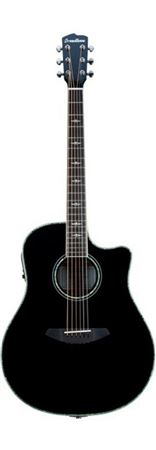 Breedlove Stage Black Magic Dreadnought Guitar wBag