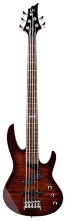 ESP LTD B55FM 5-String Electric Bass Guitar