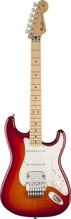 Fender Standard Strat HSS Plus Top W/Floyd Rose Tremolo Maple Fngrbrd