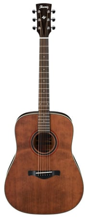 Ibanez AW250 Artwood Acoustic Guitar