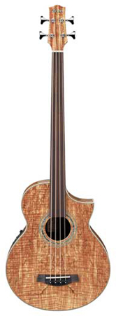 Ibanez EWB20SMFE Acoustic Electric Fretless Bass Guitar