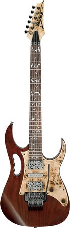 Ibanez Steve Vai JEM77WDP Electric Guitar with Case