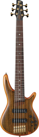 Ibanez SR1206 6 String Premium Bass Guitar with Bag