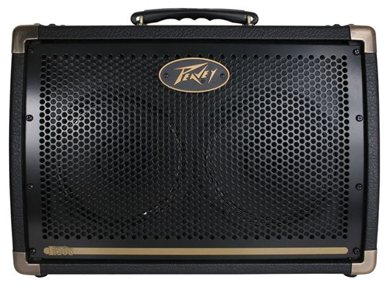 Peavey Ecoustic E208 Acoustic Guitar Amplifier