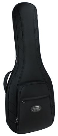 Reunion Blues RBG1SBK Midnight Continental Electric Guitar Case