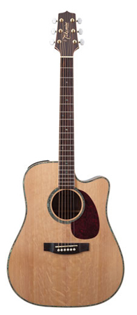 Takamine EG340DLX Dreadnought  Acoustic Electric Guitar