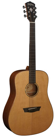 Washburn WD760SW Dreadnought Acoustic Guitar