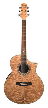Ibanez EW20ASE Exotic Wood Acoustic Electric Guitar