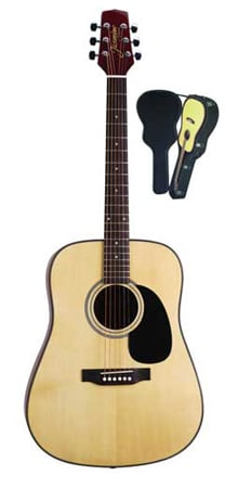 Takamine S33 Jasmine Acoustic Guitar with Case