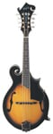 Washburn M3SWK F Style Mandolin with Case