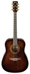 Ibanez AW30 Artwood Acoustic Guitar