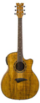 Dean Exotica Spalt Maple Acoustic Electric Guitar