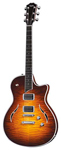 Taylor T3 Semi Hollowbody Electric Guitar with Case