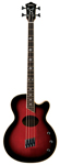 Washburn AB40 Stu Hamm Acoustic Electric Bass with Case