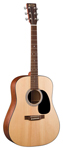 Martin D1GT 1 Series Dreadnought Acoustic Guitar with Case