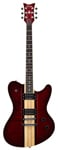 Schecter Dan Donegan Signature Ultra Electric Guitar