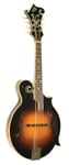 The Loar LM600 F Style Mandolin with Case