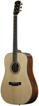 Bedell TB18G Acoustic Guitar with Gig Bag