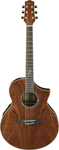 Ibanez EW35SPE Acoustic Electric Guitar