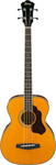 Ibanez SGBE110 Sage Acoustic Electric Bass Guitar