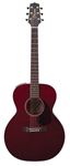 Takamine NEX Small Jumbo Acoustic Electric Guitar