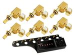 Tronical Tune Fender Reissue Guitar Package - Gold