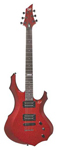 ESP LTD F50 Electric Guitar