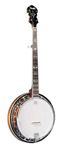 Fender FB55 5 String Banjo