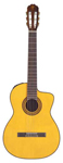 Takamine EC132C Classical Acoustic Electric Guitar with Case