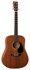 Martin DRS1Acoustic Electric Dreadnought Guitar with Case