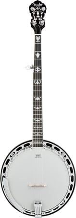 Fender FB58 5 String Banjo