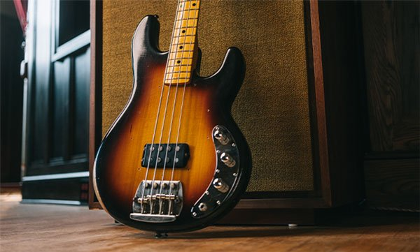 Cliff Williams Stingray Bass Front