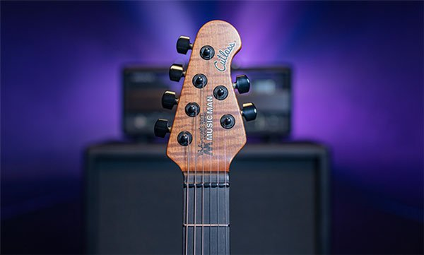 Jason Richardson Natural Buckeye Burl Headstock