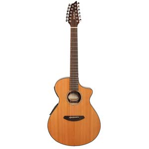 Breedlove Solo Concert 12 String Acoustic Electric Cedar Top with Bag