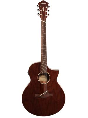 Ibanez AEW40FFCD Fanned Fret Acoustic Electric Guitar Natural Gloss