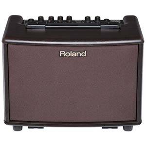 Roland AC33 Battery Powered Acoustic Chorus Guitar Amplifier