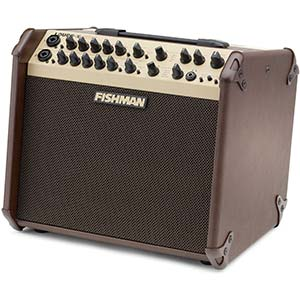 Fishman LoudboxArtist Acoustic Guitar Amplifier 8 Inch 2 Way 120 Watts