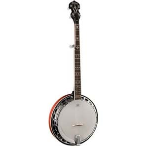 Washburn B16 Five String Banjo Sunburst with Case