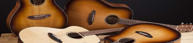Breedlove International Guitars