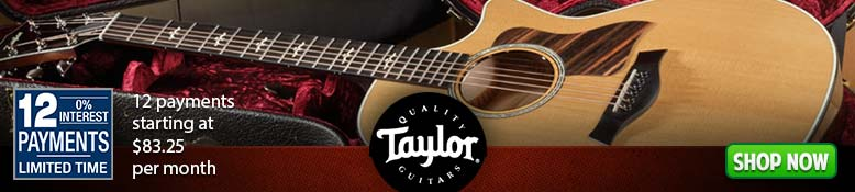 Taylor Guitars 12 Payments