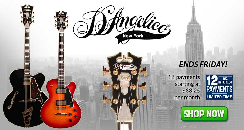D'Angelico 12 Payments