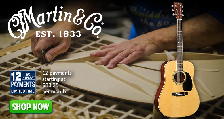 Martin 12 Payments