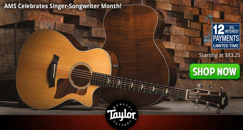 12 Payment Plans On Taylor Guitars